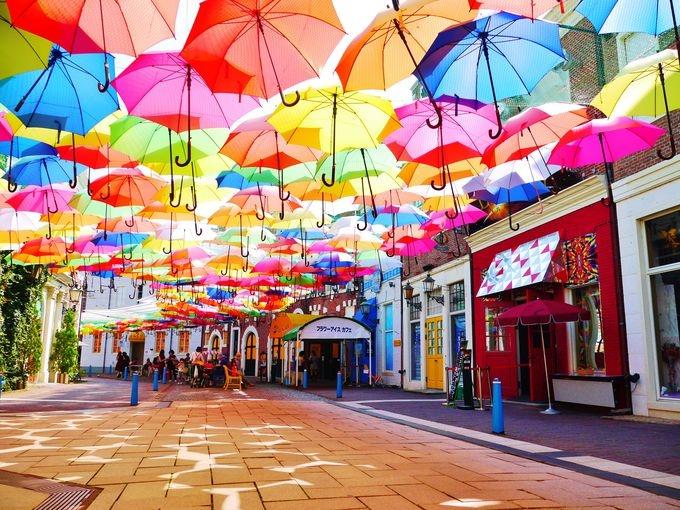 カラフル 傘
